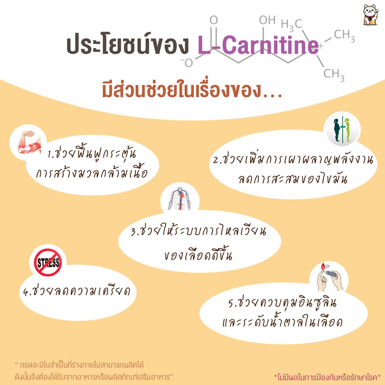 แอล-คาร์นิทีน แอล-ทาเทรต (L-Carnitine L-Tartrate) 500 กรัม