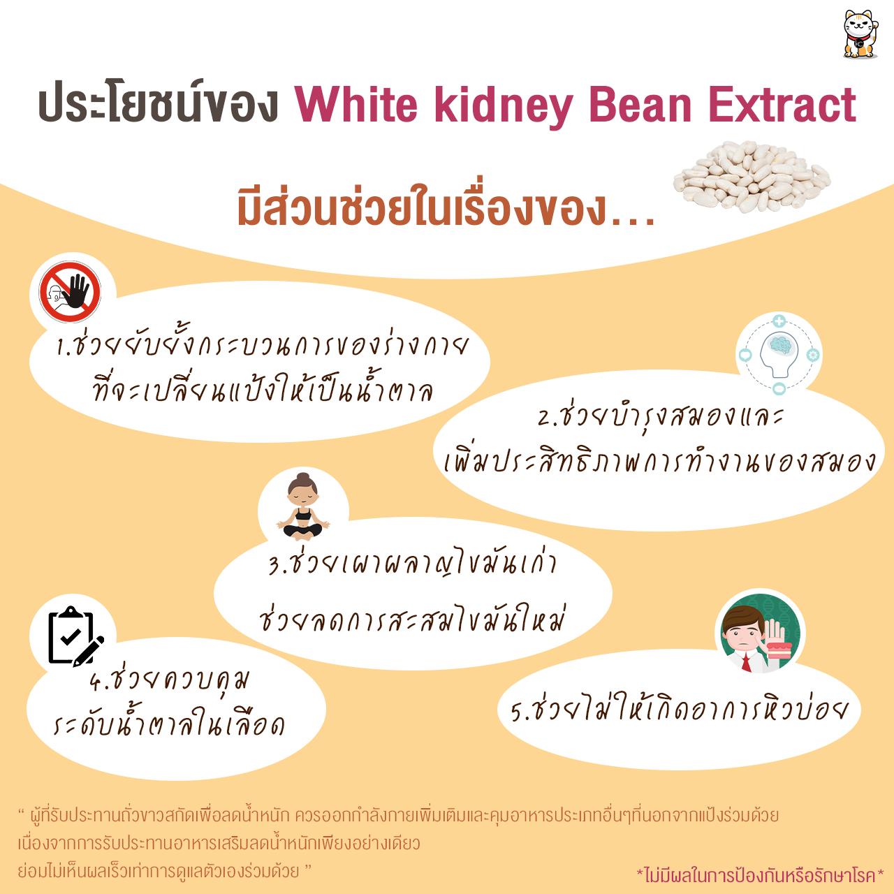 สารสกัดถั่วขาว (White kidney Bean Extract) 500 กรัม
